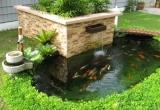 Trước nhà có nên bố trí hồ nước để hợp phong thủy?